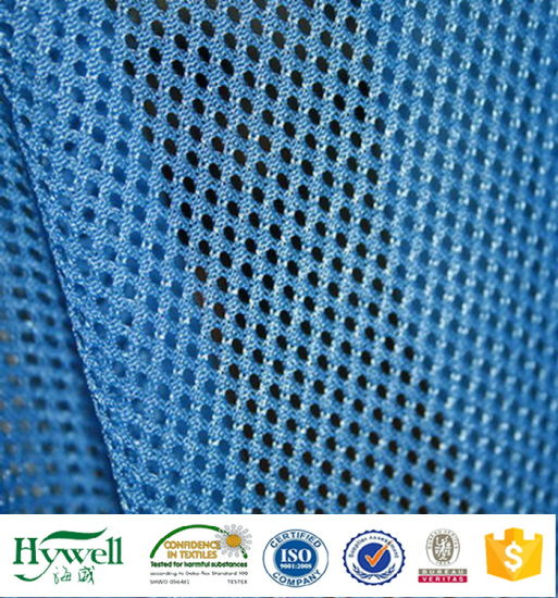 New Design Mesh Fabric for Garment